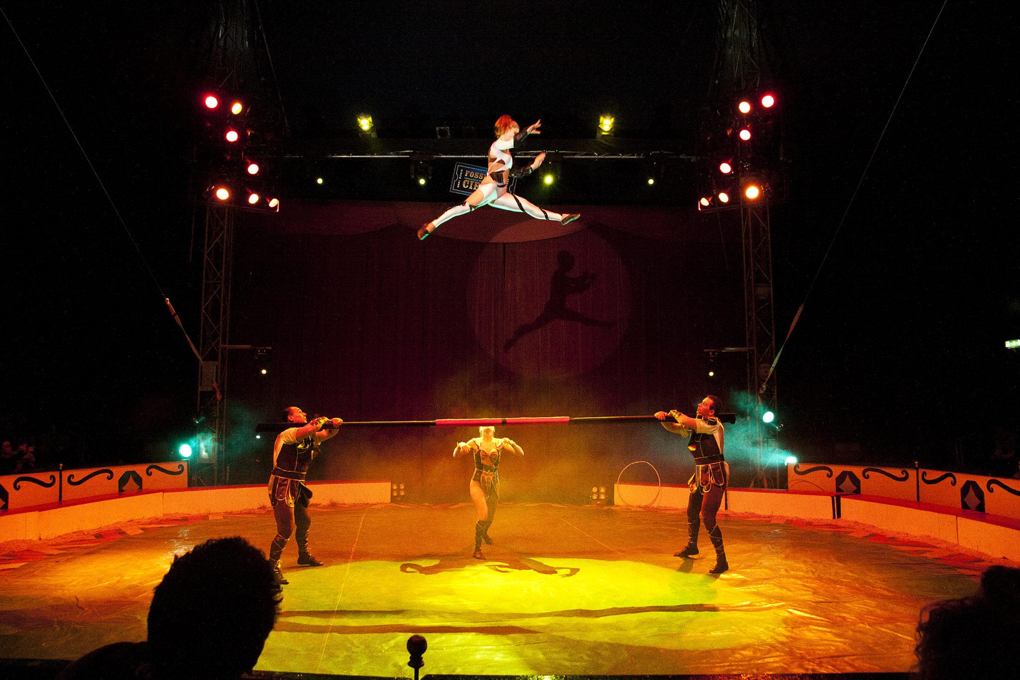 For denne utstillingen har jeg valgt å vise et bilde fra Fossett's Circus som jeg fulgte i noen uker mens jeg studerte i Dublin. Fossett's Circus er Irlands nasjonal sirkus og ble grunnlagt av Geroge Lowe i 1870. Sirkuslivet har alltid fascinert meg. Eksotiske dyr og mennesker, høytflyvende stunts og litt skumle klovner er ganske spennende. Sirkusets historie er også veldig interessant, det var en arena for folk som så litt annerledes ut eller kunne noe som ingen andre. Dette var underholdning av største grad for 100 år siden. Nå er sirkuslivet forandret, og noen vil kalle det mer en business, men jeg ser fortsatt spenningen og magien som finnes i manesjen.