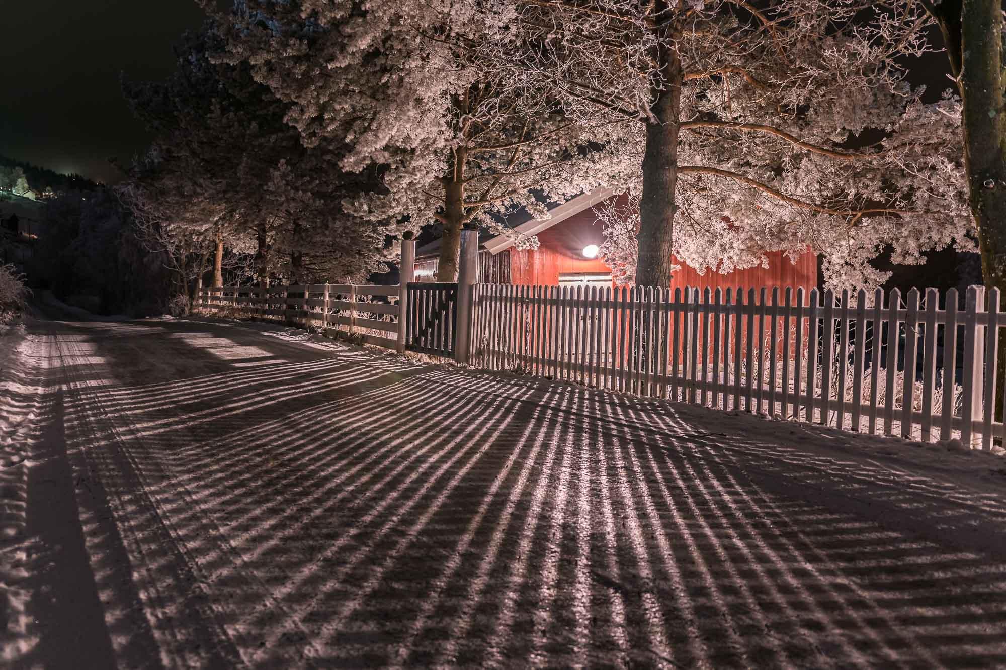 Lys og skygge ut av natten. Januar 2017 ved Kirkenær
